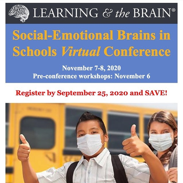 Learning & Brain conference 2020-11